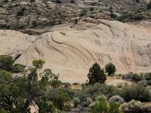 Views of sandstone and lava rock mountains and desert plants around the Red Cliffs National Conservation Area on the Yellow Knolls. Sweeping Views of sandstone Royalty Free Stock Photos