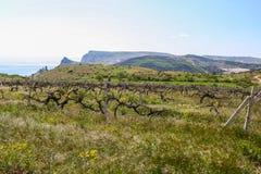 Views of the surrounding countryside , near the village of Balaklava Stock Photo