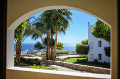 Views from window on palm trees and the sea Stock Image