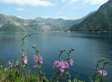 ViFlowers, горы, море и церковь на малом острове в Montenegrin бухте Стоковые Изображения