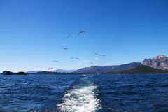Vigília do barco foto de stock