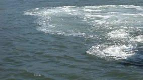 Vigília do barco video estoque