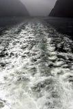 Vigília do barco da velocidade em Milford Sound Imagens de Stock Royalty Free