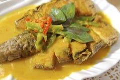 vigeterian curryfisk fotografering för bildbyråer