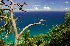Vigia cénico em Havaí imagens de stock royalty free