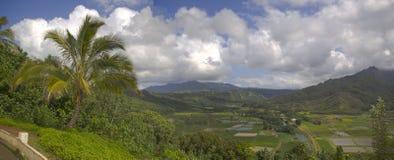 Vigia de Hanalei Fotos de Stock