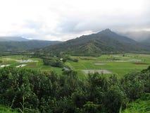 Vigia de Hanalei Walley, Kauai, Havaí Fotos de Stock Royalty Free