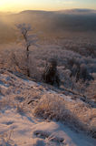 Vigia do inverno fotografia de stock