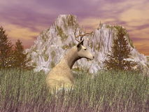 Vigilant buck - 3D render Stock Photography