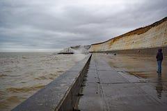 Vigilante del mar Foto de archivo libre de regalías