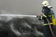 Vigile del fuoco Immagini Stock
