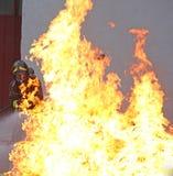 Vigile del fuoco con le alte fiamme molto calde Immagine Stock