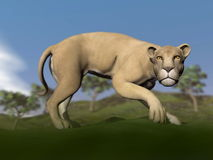 Vigilent lioness - 3D render Royalty Free Stock Photography