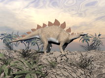 Vigilent stegosaurus Royalty Free Stock Photo