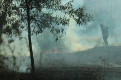 Vigili del fuoco sul lavoro che prova a controllare fuoco al campo bruciante Fotografia Stock