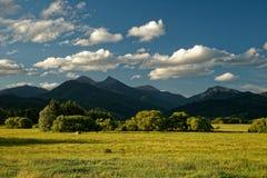 Vigna, cantina Nuova Zelanda, paesaggio tipico di Marlborough con le vigne e strade, colline e montagne Fotografia Stock