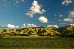Vigna, cantina Nuova Zelanda, paesaggio tipico di Marlborough con le vigne e strade, colline e montagne Fotografia Stock Libera da Diritti