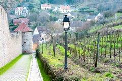Vigna con la vecchia città su fondo in Ribeauville, Francia, Als Fotografia Stock