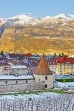 Vigna e le alpi in Chur ad alba Fotografie Stock