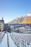 Vigna e montagne in Chur ad alba Fotografie Stock Libere da Diritti