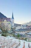 Vigna e montagne in Chur ad alba Immagine Stock