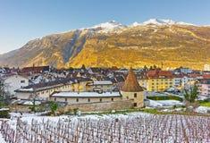 Vigna ed alpi in Chur ad alba Fotografia Stock