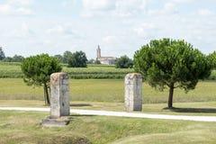 Vigna in Medoc vicino al Bordeaux in Francia Fotografie Stock Libere da Diritti