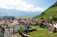 Vigna, Svizzera Immagine Stock