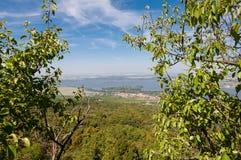 Vigna vicino al piccoli villaggio, cielo blu, agricoltura e vino Immagine Stock Libera da Diritti