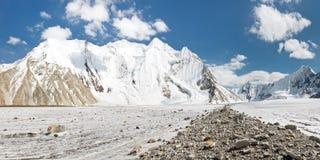 Vigne冰川全景,喀喇昆仑,巴基斯坦 免版税库存图片