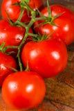 Vigne avec les tomates mûres rouges de la serre chaude néerlandaise Photographie stock