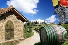 Vigne dans Chianti, Italie image libre de droits