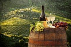 Vigne dans Chianti, Toscane images stock