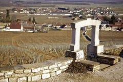 Vigne de l'hiver en Bourgogne Photographie stock libre de droits