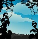 Vigne de silhouette Photos libres de droits