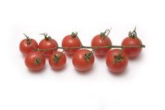vigne de tomates-cerises Photographie stock libre de droits