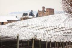 Vigne di Grinzane Cavour Immagine di colore fotografia stock libera da diritti