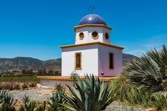 Vigne di trascuratezza della costruzione a cupola ad Adobe Guadalupe Vineyard Fotografie Stock Libere da Diritti