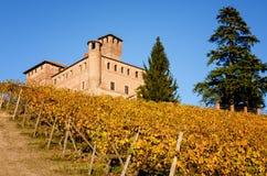 Vigne e castello di Grinzane Cavour in Piemonte Italia Immagini Stock