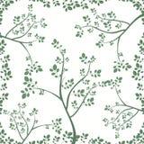 Vigne et branches dans Grey Spring Floral Background Photos stock