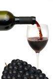 Vigne rouge Image libre de droits