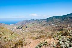 Vigne su Tenerife Immagini Stock