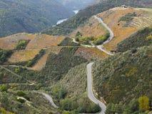 Vigne sui pendii 3, sacri di Rivera, Spagna fotografie stock libere da diritti