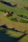 Vignes avec la maison no.1 Image libre de droits
