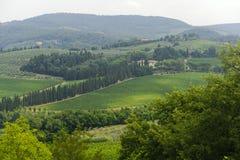 Vignes de Chianti (Toscane) image libre de droits