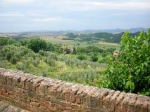 Vignes de Chianti Toscane Photos stock
