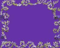 Vignes de couleur d'eau Images stock