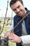Vignes de découpage d'homme Photographie stock