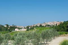 Vignes de les de Rousset de village Photo libre de droits