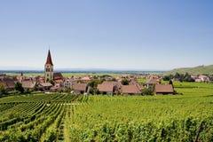 Vignes et village Images libres de droits